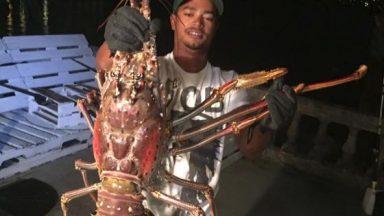 massive-lobster-2
