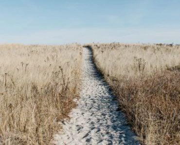 Staying on the Path is a Crucial Component to Success